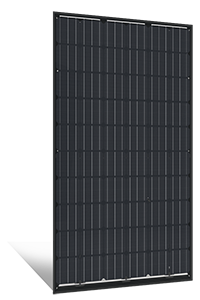 Solarwatt Vision 60M Style